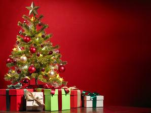 Weihnachtsbaum Quelle: lily - Fotolia