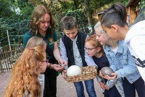 Führungen im Zoo Magdeburg