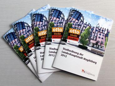 Serie aus der Volksstimme zur neuen Stadtordnung