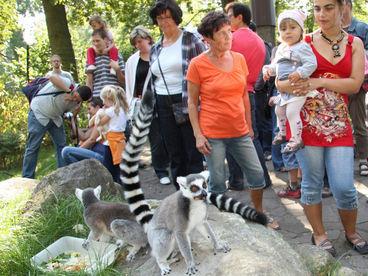 Zoo Magdeburg tierisch nah © Zoo Magdeburg