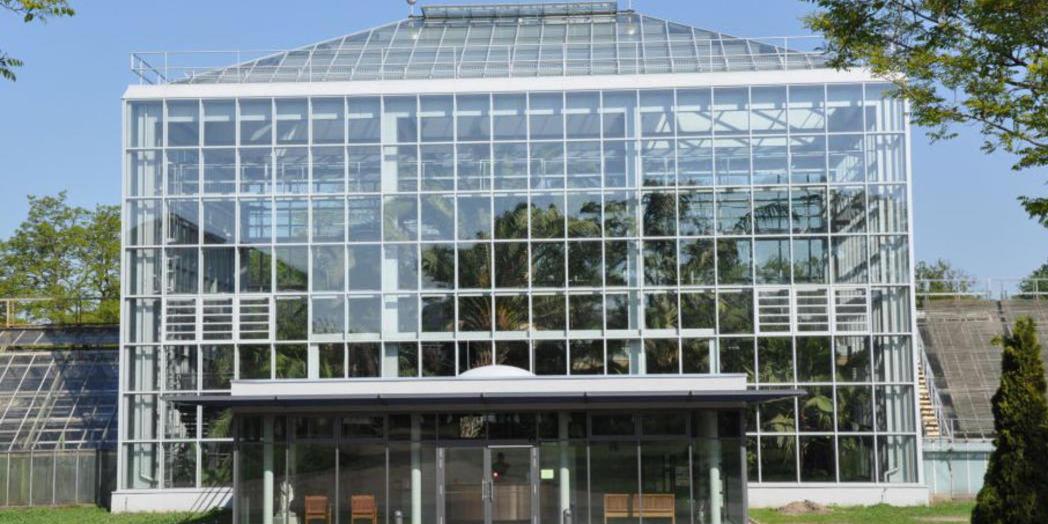10. Gruson-Gewächshaus als Außenansicht © Gruson-Gewächshäuser