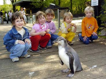 Zooführungen © Zoo Magdeburg