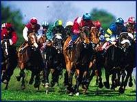 Interner Link: Herrenkrug horse race course